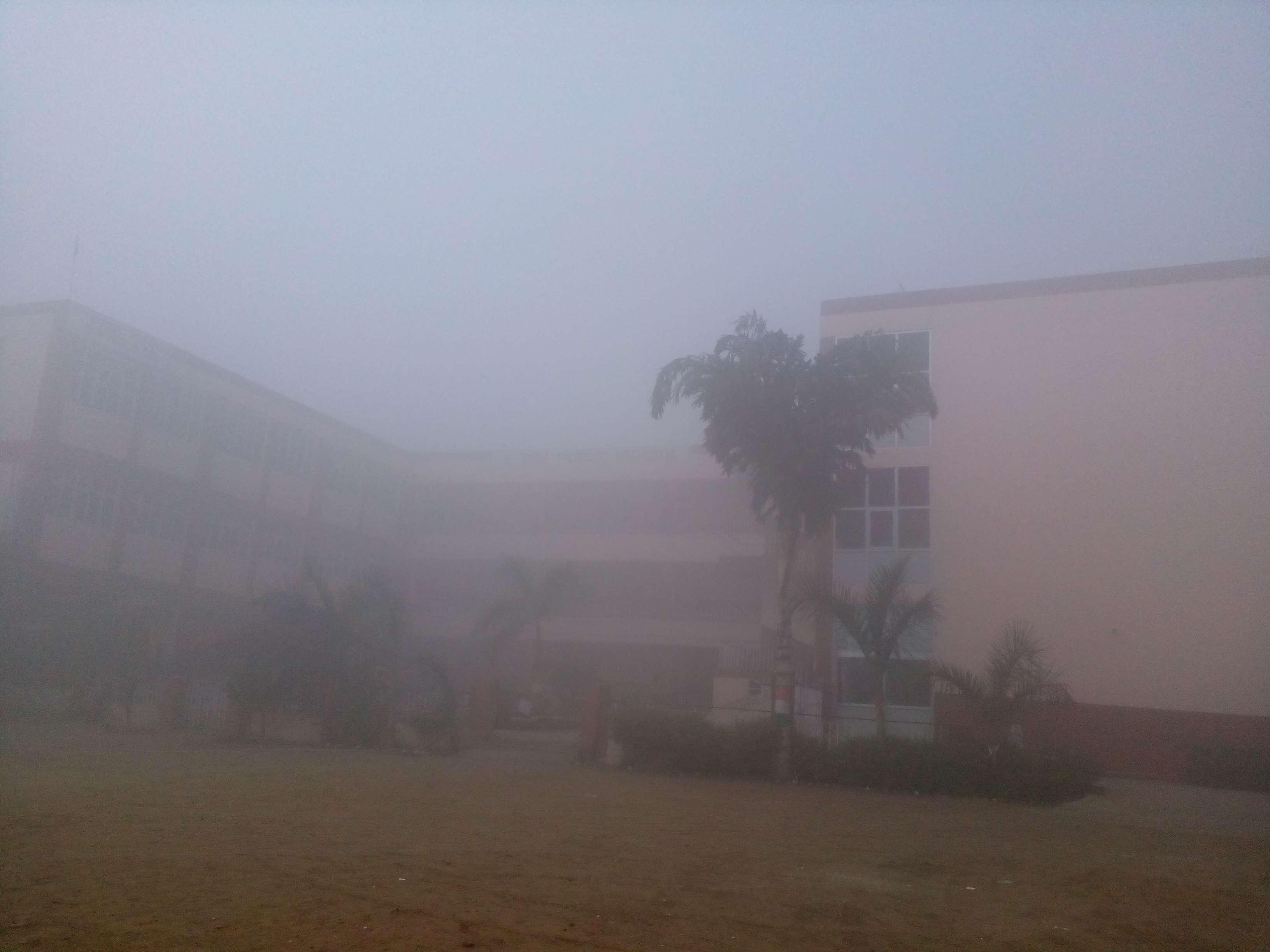 DAV PUBLIC SCHOOL SALWAN ROAD ASSANDH DISTT KARNAL HARYANA 530468
